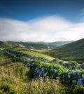 Turismo dos Açores