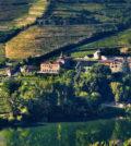 Six Douro Valley