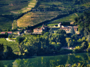 Six Douro Valley