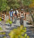 Bicicleta Algarve
